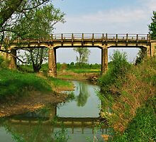 Bridge of Love by Marina Herceg