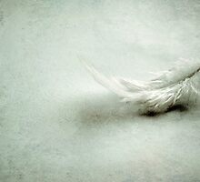 One day I'll fly away... by lorrainem