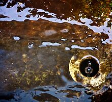 Rusty Water by hynek