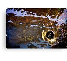 Rusty Water Canvas Print