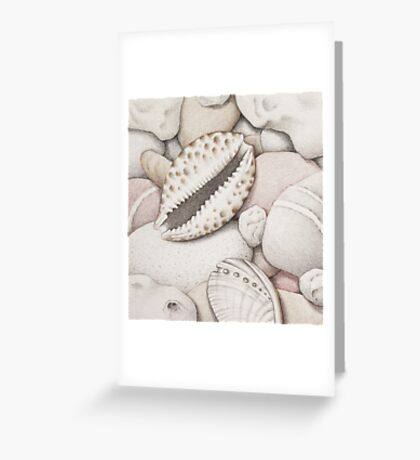 Pebbles, Cowrie & Abalone Shells Greeting Card