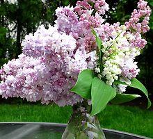 Spring in a vase by MarianBendeth