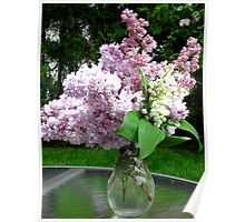Spring in a vase Poster