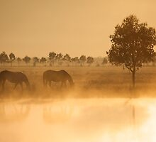 Golden Pond by Paul Moore