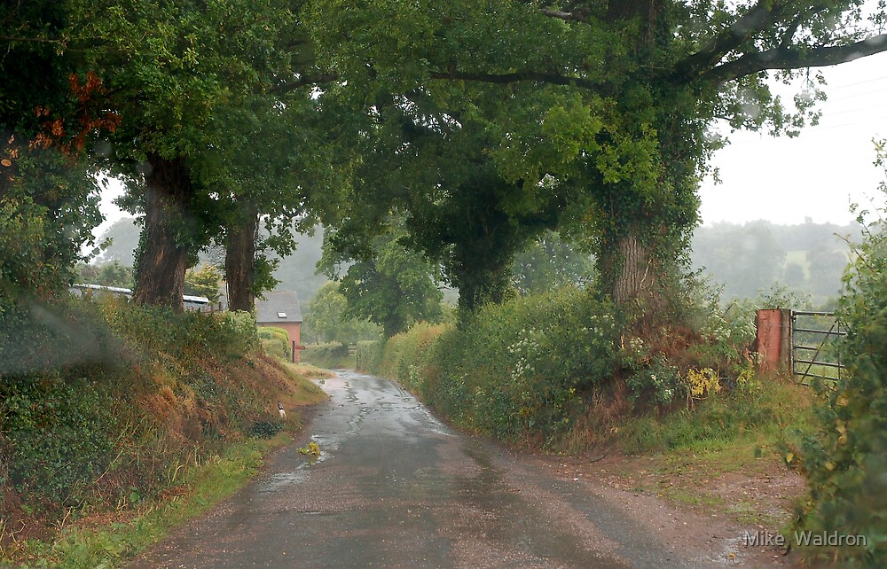Rainy day through a Windscreen 1, Lashbrook by Mike  Waldron
