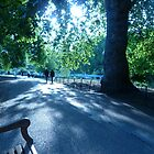 In St James' Park by Chris1249