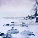 Cold shoulder by Angela King-Jones