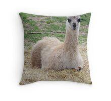 Baby Lama Throw Pillow