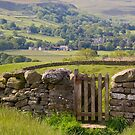 Gateway to Wenselydale by Andrew Leighton