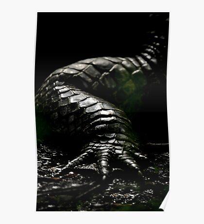 The Dark Side:  Alligator Armor Poster