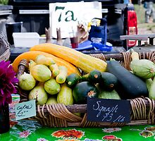 Cukes and Squash by phil decocco