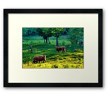 Out in the Pasture Framed Print