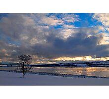 Winter tree-III Photographic Print