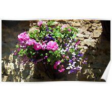 Abbotsbury Floral Display Poster