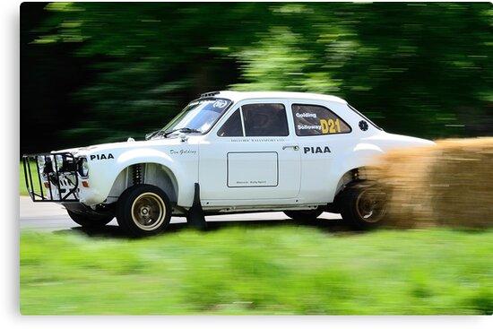 Ford Escort MK1 Safari Rally Car by Willie Jackson