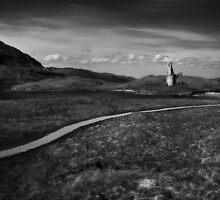 Ardvreck Castle by Dorit Fuhg