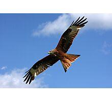 As High as a Kite. Photographic Print