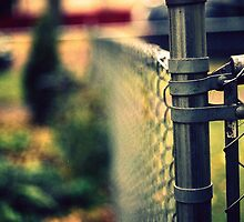 fenced in. by marie223