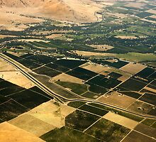 Orange Groves of Central San Joaquin Valley -California - Aerial View by Buckwhite