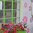 Matlacha Flower Box by Christine Sullivan