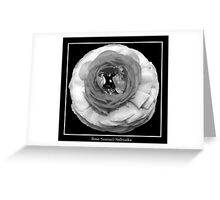 Flower in Black & White Greeting Card