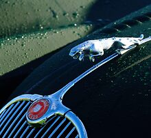 Jaguar XK 150 Hood Ornament by Jill Reger
