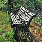Abandoned Bench by Diane Arndt