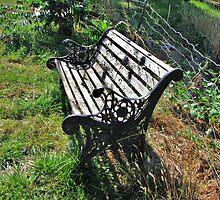 Abandoned Bench by trueblvr