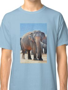 Painted Elephant in the Desert Classic T-Shirt