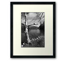Spring Mountain Lake Framed Print