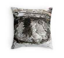 Eye of Birch Tree, Muskoka Throw Pillow