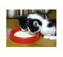 thisty kittens Art Print