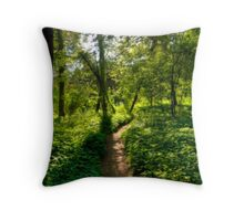 Walking Toward the Sun Throw Pillow