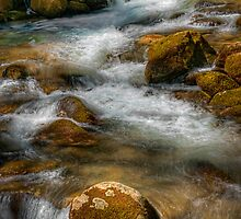 Big Creek  by JHRphotoART