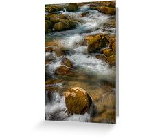 Big Creek  Greeting Card