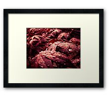 After - rain of the mourning sun Framed Print