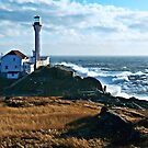 A Gusty Day at the Cape by Debbie  Roberts