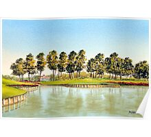Sawgrass Golf Course Hole 17 Poster