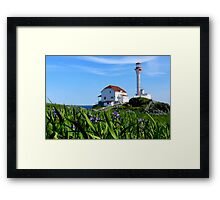 Cape Forchu in Irises Framed Print