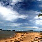 Coconut Serenity - Hull Heads, Mission Beach NQ by Giovanna Devlin