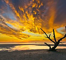 Sunset over Moreton Bay by Tom Anderson