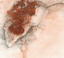 Chinese Zodiac - The Rat by Kirsten Glenwright