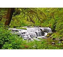 Sweet Creek 2 Photographic Print