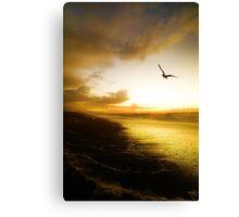 Haast Beach Sunset Canvas Print