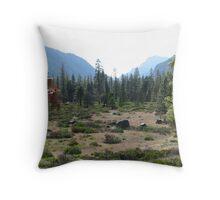 Down Canyon View Throw Pillow