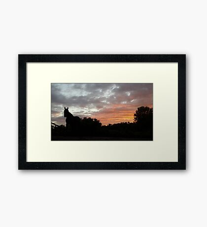 Standing proud in grey and orange sunset Framed Print