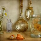 The shelf by Mandy Disher