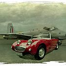 Jet Provost & Bugeye by Steven  Agius