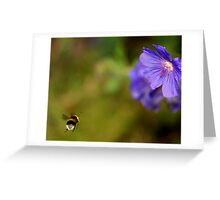Busy, Busy Greeting Card