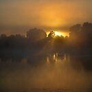 Foggy Sunrise by Ruth Anne  Stevens